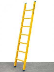 Kunststof enkele ladder leverbaar van 8 t/m 24 sporten