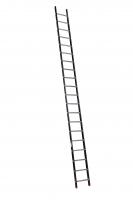 ALPINE enkele ladder 1x20 120120
